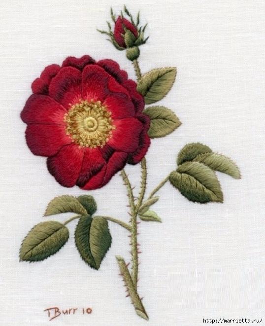 Цветы объемной вышивкой гладью. Красивые работы (33) (538x661, 227Kb)