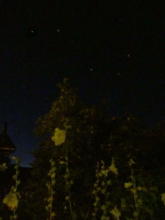звезды (525x700, 386Kb)
