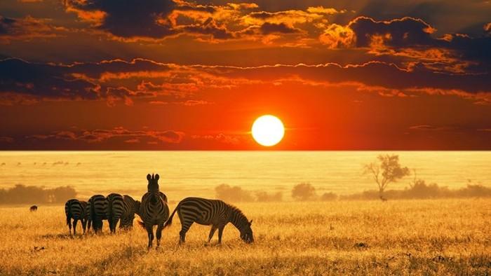 Какая страна в Африке самая большая по площади