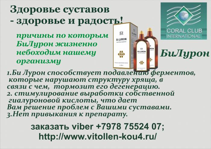 Bi_Luron__SSI_Elena_Terenteva_ (700x497, 375Kb)