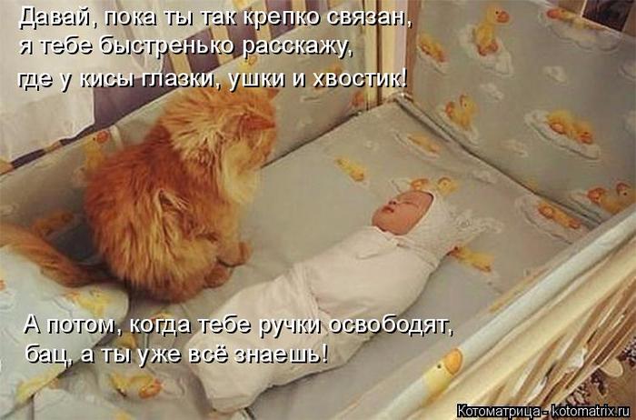 kotomatritsa_9 (700x462, 334Kb)