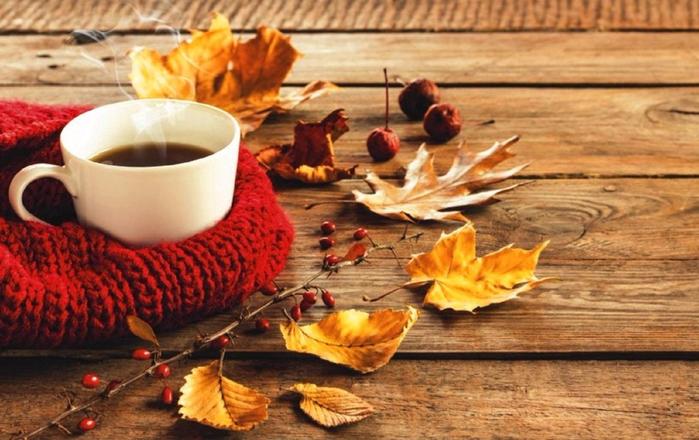 rf1g_autumn_coffee_photography_fall_cup_leaf_hd-wallpaper-1835682 (700x440, 371Kb)