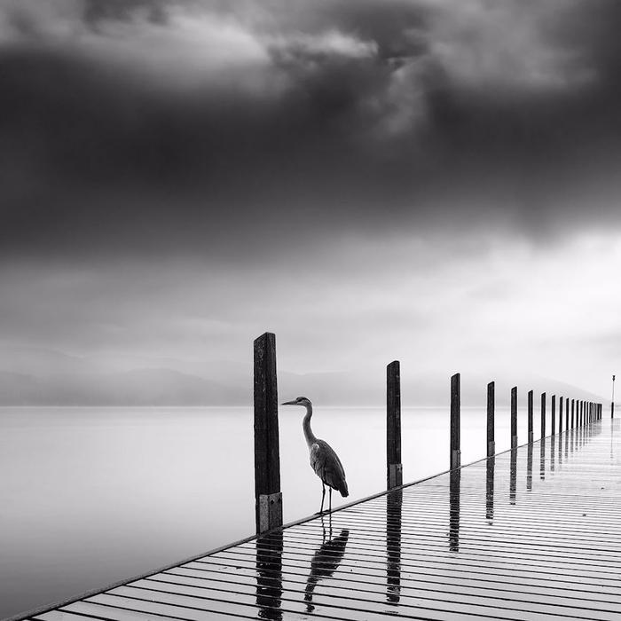 La-Photographie-minimaliste-capte-la-Profondeur-dramatique-de-la-Nature-en-Noir-et-Blanc-07 (700x700, 186Kb)