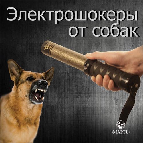 shoker_dogs (500x500, 72Kb)