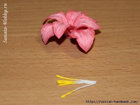 Бумагопластика. Цветы из акварельной бумаги (17) (450x337, 86Kb)