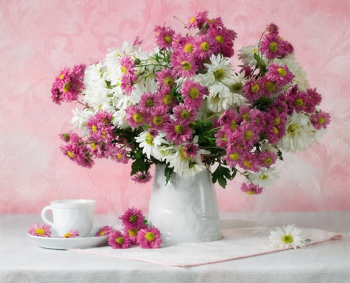 cvety_foto_Dasha_Nikonchuk_16 (699x566, 99Kb)