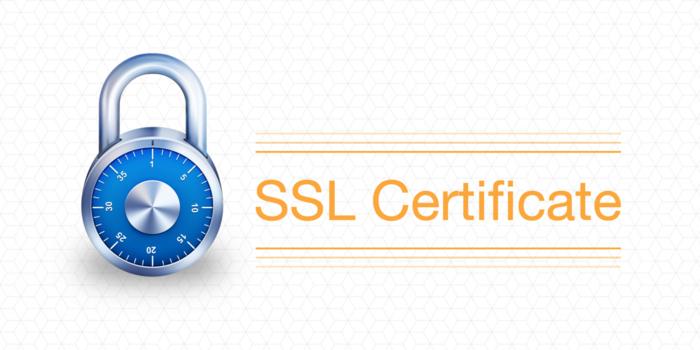 купить SSL-сертификат/3925073_SSLCertificate (700x350, 146Kb)