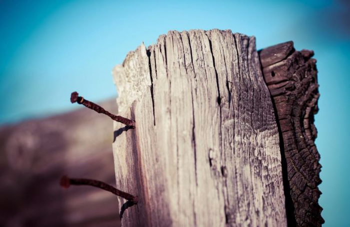 fence-nail-180930 (700x454, 266Kb)