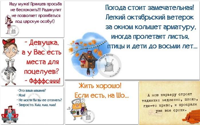 5672049_1444584980_frazki (700x437, 88Kb)