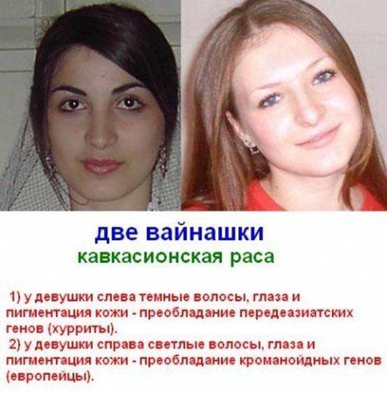 Чеченцы и ингуши: чем они отличаются