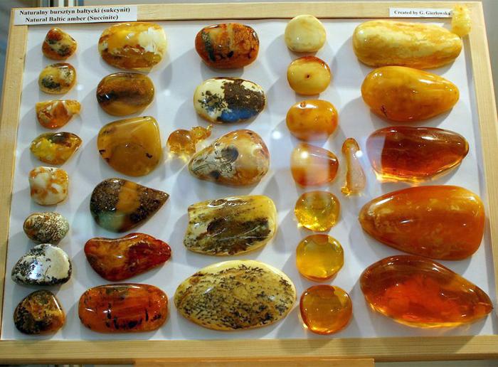музей янтаря калининград фото 7 (700x516, 475Kb)