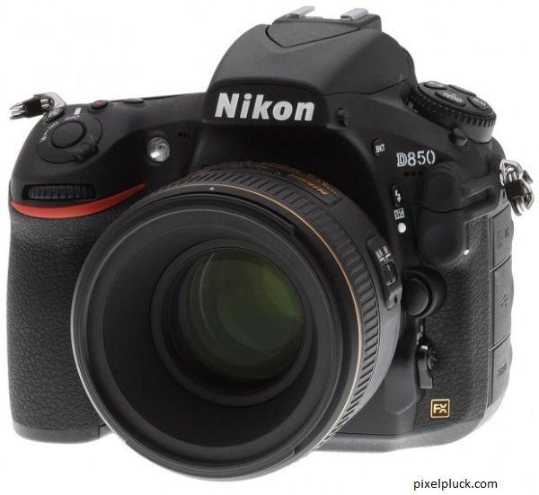 3936605_Nikon_D850 (600x551, 44Kb)