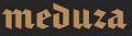 6209540_logo_MEDUZA (120x33, 5Kb)