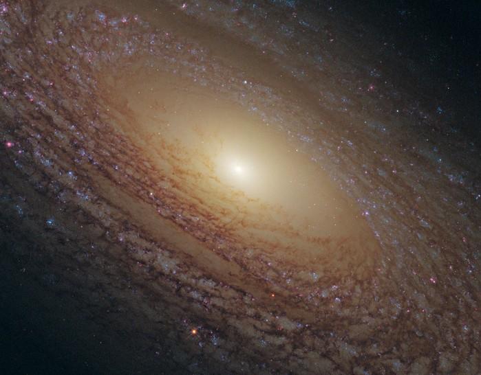 NGC-2841-1024x800 (700x546, 92Kb)