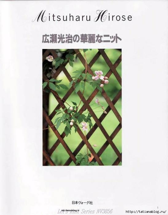 p0003 copy (547x700, 184Kb)
