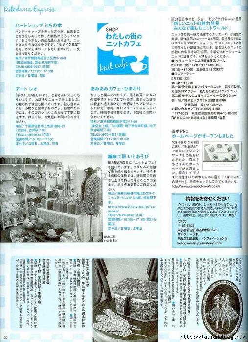 55 copy (507x700, 346Kb)