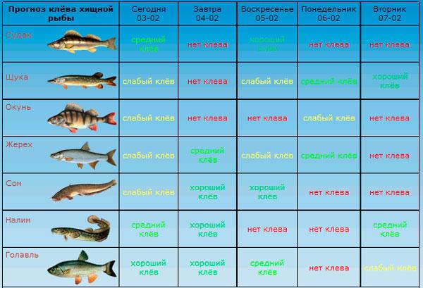 процент клева рыбы на сегодня