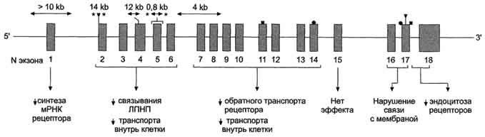 От холестерина/6174149_26000140sklerozirovanieilechenievarikozavkolomne (679x193, 21Kb)