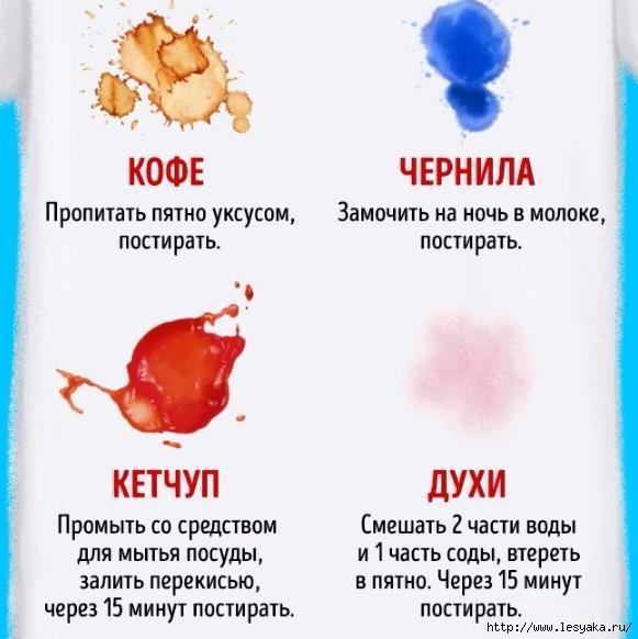 Как быстро вывести грибок из организма