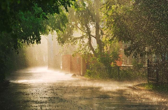 Почему возникает сонливость во время дождливой погоды