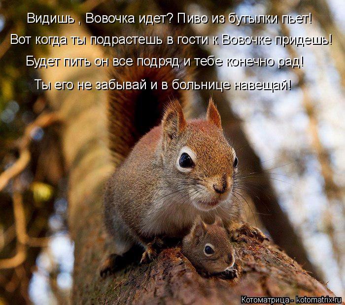 kotomatritsa_h3 (700x619, 483Kb)