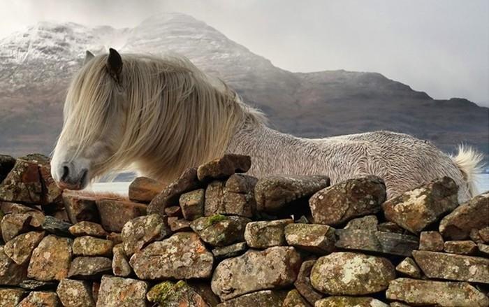 Шотландия названа самой красивой страной мира