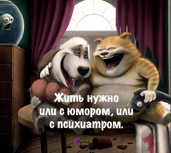 3085196_jit_nyjno_s_umorom (700x626, 605Kb)