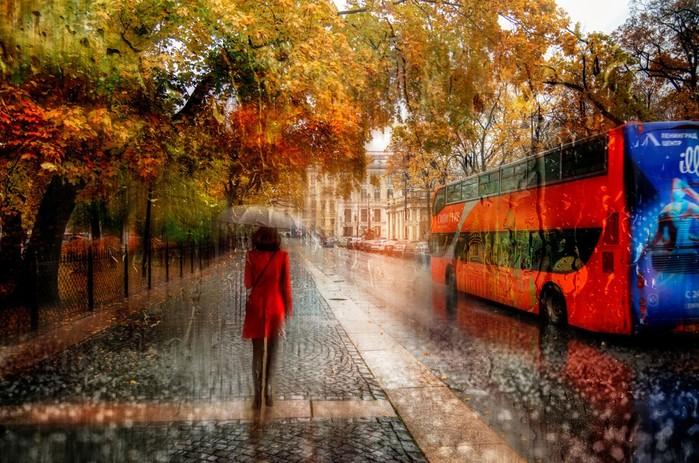 «У жовтні теплий дощ хіба не диво?..»