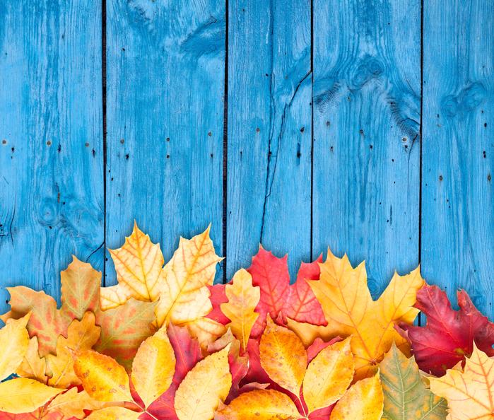 фото заставка на рабочий стол осень