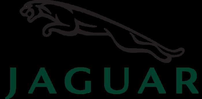 jaguar-1038x781 (700x343, 64Kb)