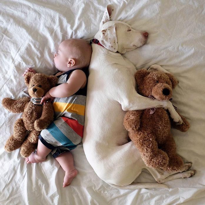 дети и животные фото 4 (697x700, 491Kb)