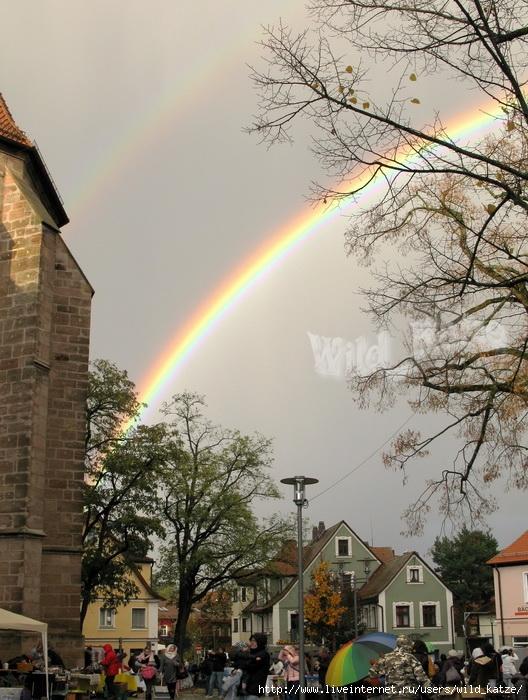 Regenbogen1wz (528x700, 308Kb)