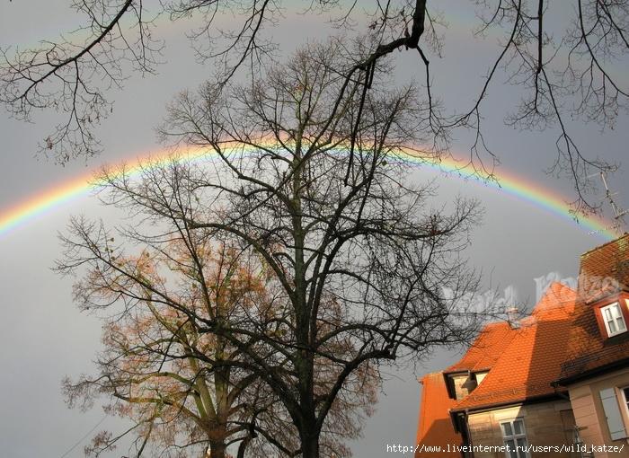 Regenbogen3wz (700x510, 353Kb)