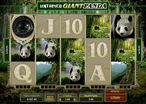 2. Untamed Giant Panda (508x364, 248Kb)