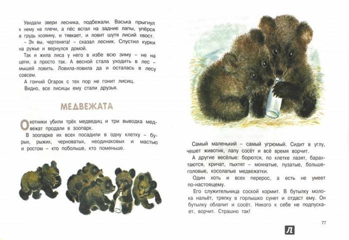137961227 1 Интересные факты из жизни и биографии Евгения Чарушина