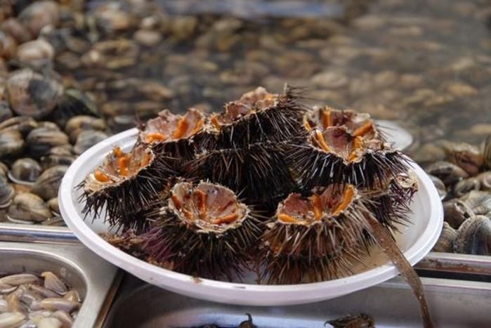 Живой обед: топ 10 блюд из неубитых животных