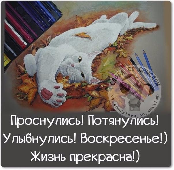 1416085580_frazochki-22 (604x588, 243Kb)