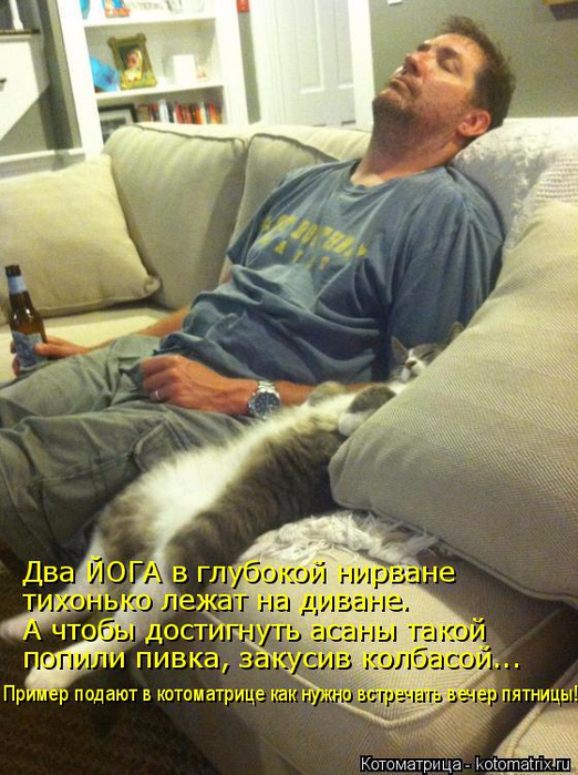 kotomatritsa_d (2) (522x700, 433Kb)