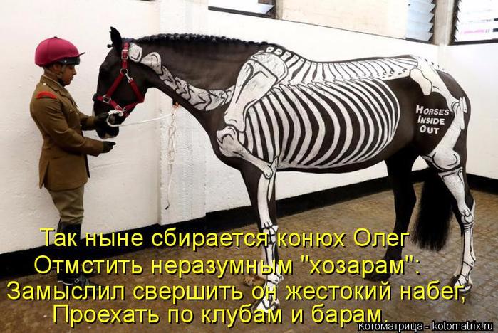 kotomatritsa_G (1) (700x468, 390Kb)