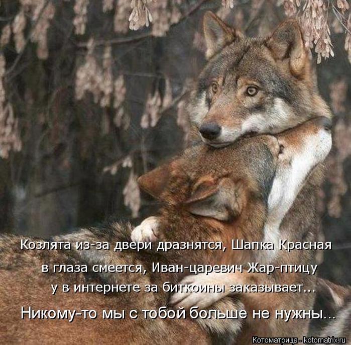 kotomatritsa_Gc (700x686, 503Kb)