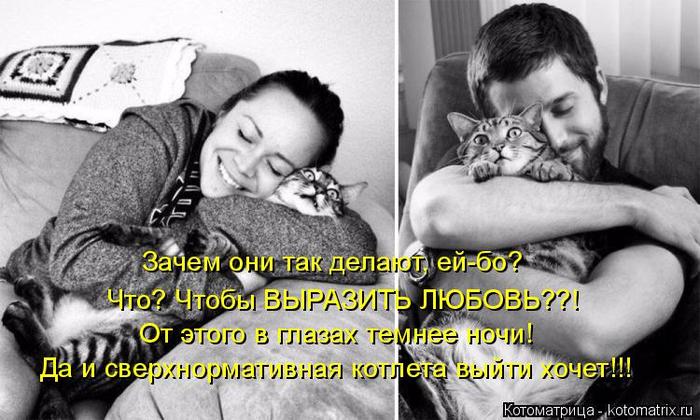 kotomatritsa_i (700x420, 278Kb)