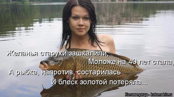 kotomatritsa_jE (700x392, 243Kb)