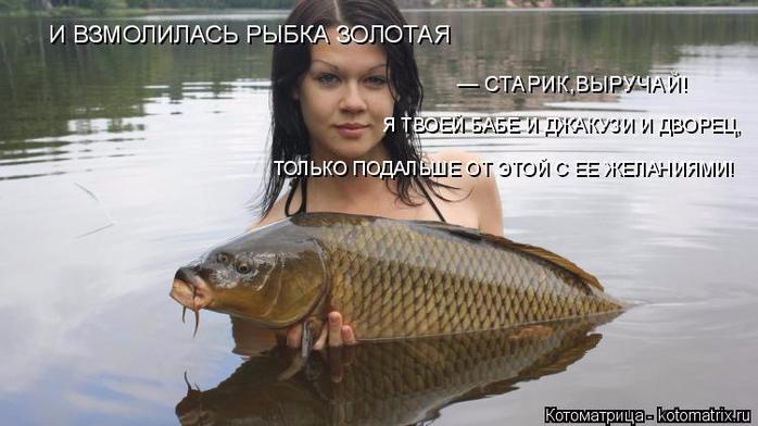 kotomatritsa_N (2) (700x392, 239Kb)