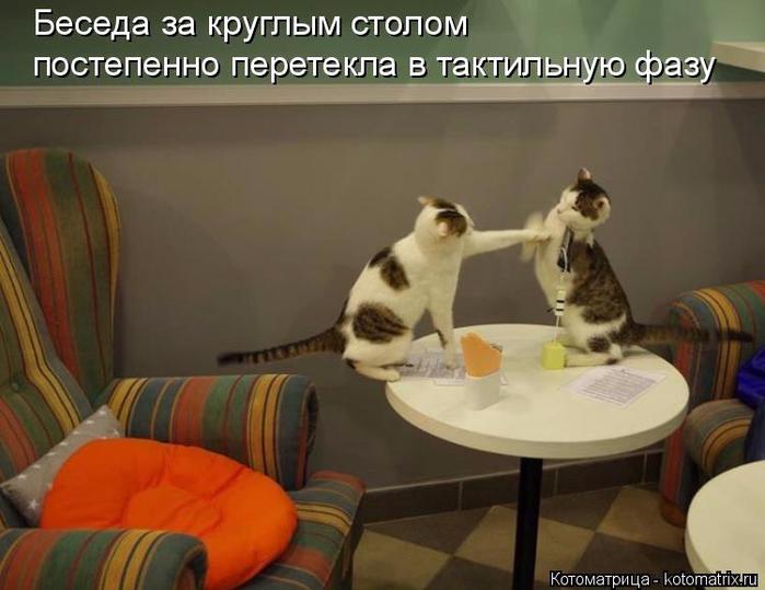 kotomatritsa_y (1) (700x539, 290Kb)