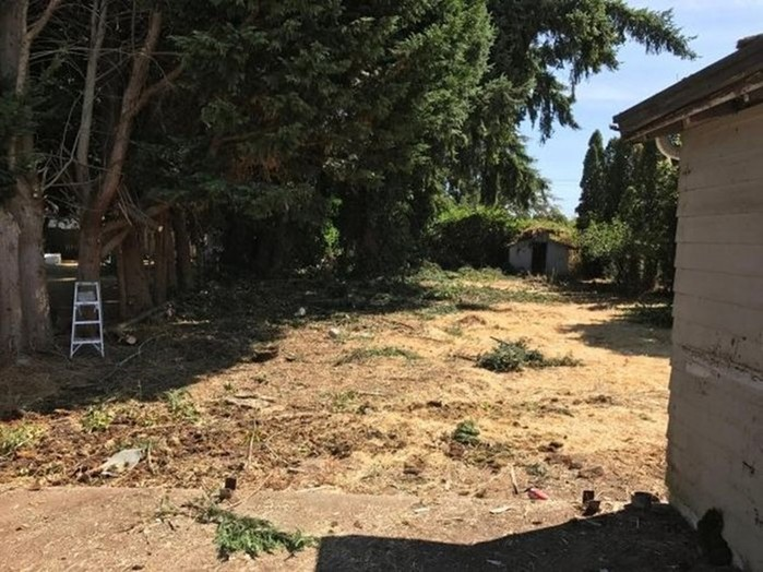 Заброшенный дом в Сиэтле изменили до неузнаваемости