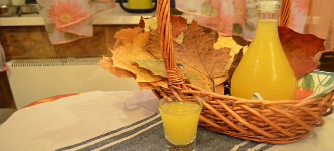 Рецепты домашнего вина из облепихи