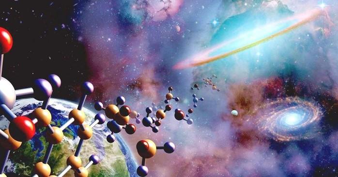 Интересные факты о жизни на Земле