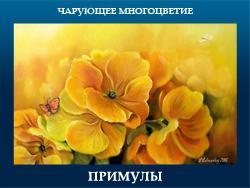 5107871_PRIMYLI (250x188, 80Kb)
