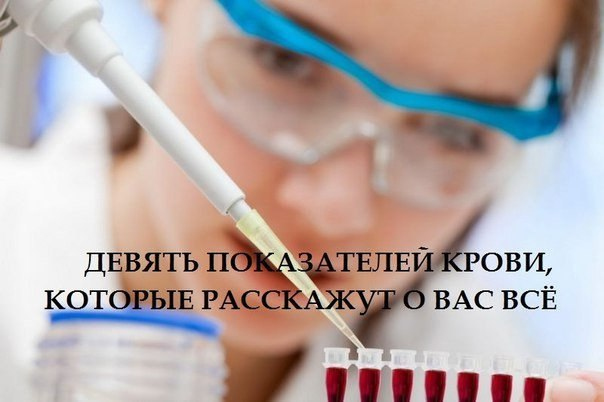 5640974_Fm2PPxDwQpM (604x402, 38Kb)
