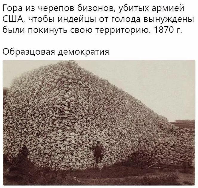 горы черепов бизонов сша 1870 (663x630, 556Kb)